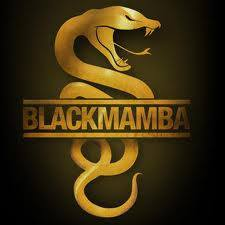 Logo Black Mamba Racing